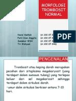 Trombosit Normal 2