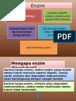 Presentation1-Enzim.ppt
