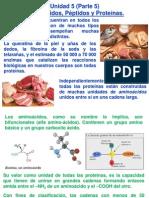 Unidad-5-Biomoléculas-Aminoácidos-P.5-2S-2014-USAC.pdf
