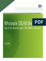 Wholesale Dslam Dec 08 Conference