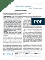 Novel Insulin Receptor Signaling Platform
