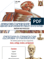 Muskuloskeletal System Anatomy and Assessment
