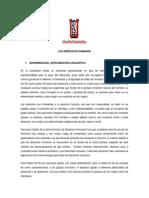 derechoshumanostrabajoescrito-131211134049-phpapp02
