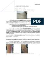 Lesiones Cutaneas