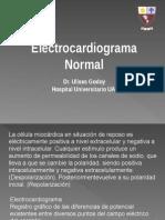ECG Normal