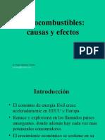 Agrocombustibles Causas y Efectos
