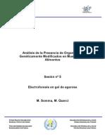 Electroforesis en ALimentos GM.pdf