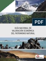 Guia_de_valoracion.pdf