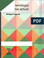 Capelle Fenomenologia Francesa Actuala