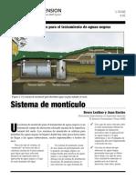 MONTICULO.pdf