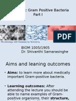 Pathogenic Gram Positive Bacteria (4)