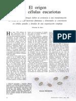 El Origen de Las Células Eucariontes