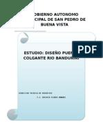 ESTUDIO Puente Colgante Rio Banduriri
