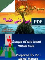 Head Nurse Role
