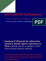 ZAPALJENJE (Inflamatio)