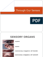 World Through Our Senses (All Sensory Organs).ppt