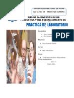 laboratorio 3 caratula