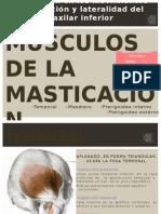 Musculos de Masticación.ppt