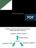Clase de L. Palomares - Pentosas ppt