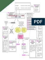 Los Fines de La Educacion Juan Delval Mapa Conceptual