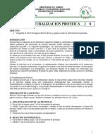 Practica 4. Proteinas