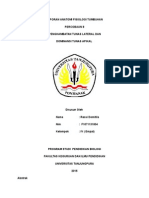 Ressi Domitila (f1071131004) Laporan Penghambatan Tumbuh Tunas Lateral Dan Dominansi Tunas Apikal