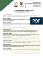 Fhuatx Productos Lista Precios 2010-1