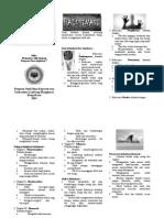 Leaflet Halusinasi 2015