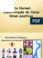 Aula Micro Bacterias Gram Positiva