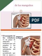 sndromedelosmanguitosrotadores-130813192059-phpapp02.pptx