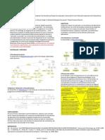 Modelos de procedimientos creados mediante UVe Heurististica y mapas conceptuales