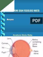 46010100 Anatomi Fisiologi Mata