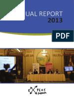 Raportul anual de activitate 2013