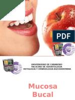 mucosabucal