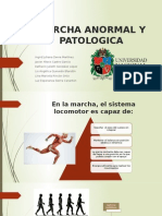 Marcha Anormal y Patologica