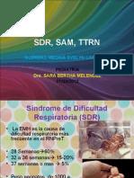 SDR, SAM Y TTRN