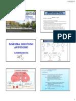 Sistema Nervioso Autonomo - II Parte