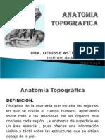 TEMA 1 ANATOMIA TOPOGRAFICA F.ppt