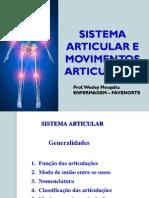 Sistema Articular - Aula 03(1)