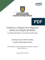 Memoria Tendencias y Patrones de La Migracion Interna en La Region Del Biobio (Palma 2013)