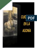 Agonia y Sedacion 2010