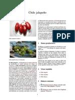 Chile Jalapeño