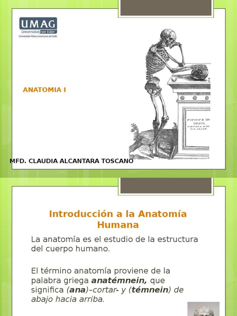 Anatomia Integral de Ext.