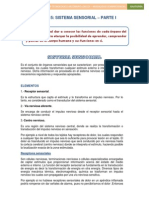 Sesion 15 - Sistema Sensorial - Parte i (1)