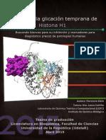 TesisFK_LC.pdf
