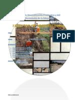 obras preliminares.pdf