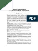 Obtención y Purificación de IgY Dirigidas Contra La Lectina de Salvia Bogotensis