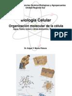Organizacion Molecular de la celula