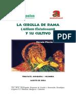La Cebolla de Rama y Su Cultivo