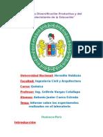 Informe de Quimica Acidos y Bases